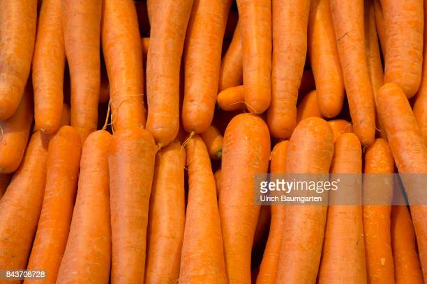 Symbol photo on the topic vegetables nutrition health food scandal etc The photo shows carrots