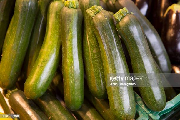 Symbol photo on the topic vegetables nutrition health food scandal etc The photo shows zucchini from Italy
