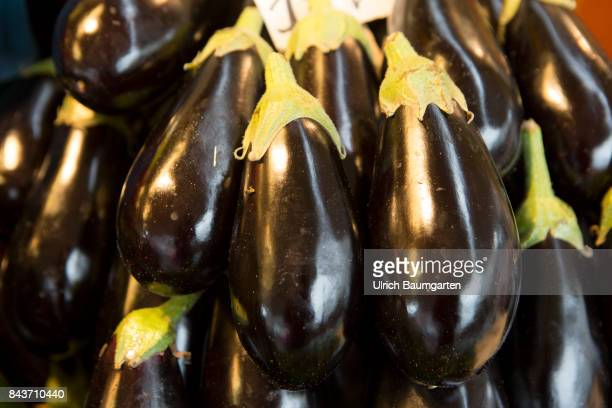 Symbol photo on the topic vegetablesnutrition health food scandal etc The photo shows eggplants from Italy
