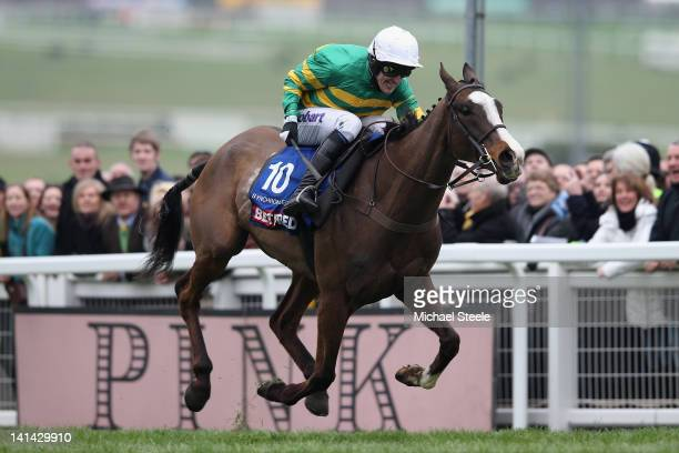 Synchronised ridden by Tony McCoy on his way to winning the Cheltenham Gold Cup Steeplechase race at Cheltenham Racecourse on March 16 2012 in...