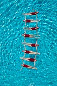 Synchronised swimmers form a ladder