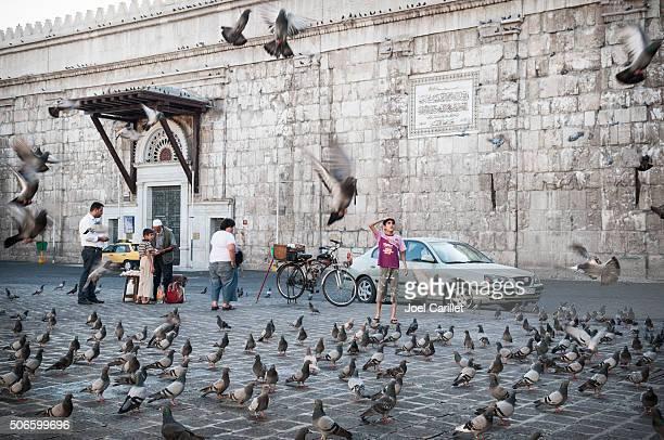 Garçon syrienne et de vol de pigeons à Damascus, Syrie