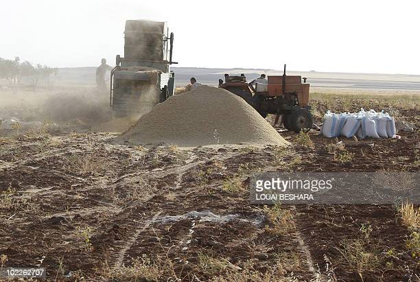 Syrian farmers collect crops in a field in Daraa 100 kms south of Damascus on June 5 2010 The United Nations World Food Programme has started...
