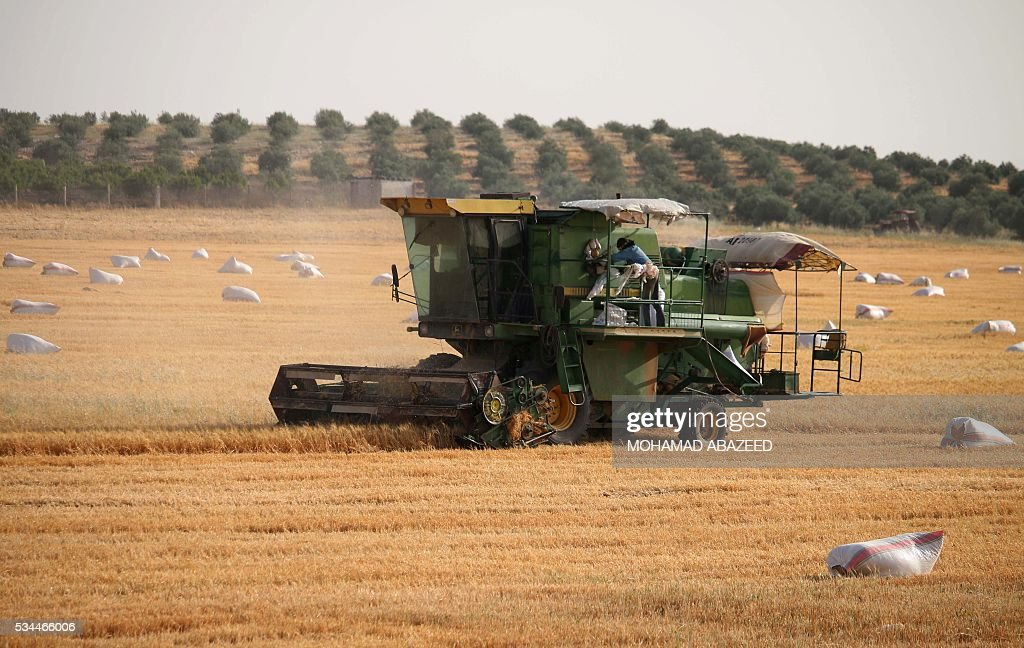 A Syrian man checks a combine harvester as they harvest wheat in rebel-held area of Daraa, in southern Syria, on May 26, 2016. Most of Daraa province is controlled by opposition forces, though the government holds parts of the provincial capital and a few villages in the northwest. ABAZEED