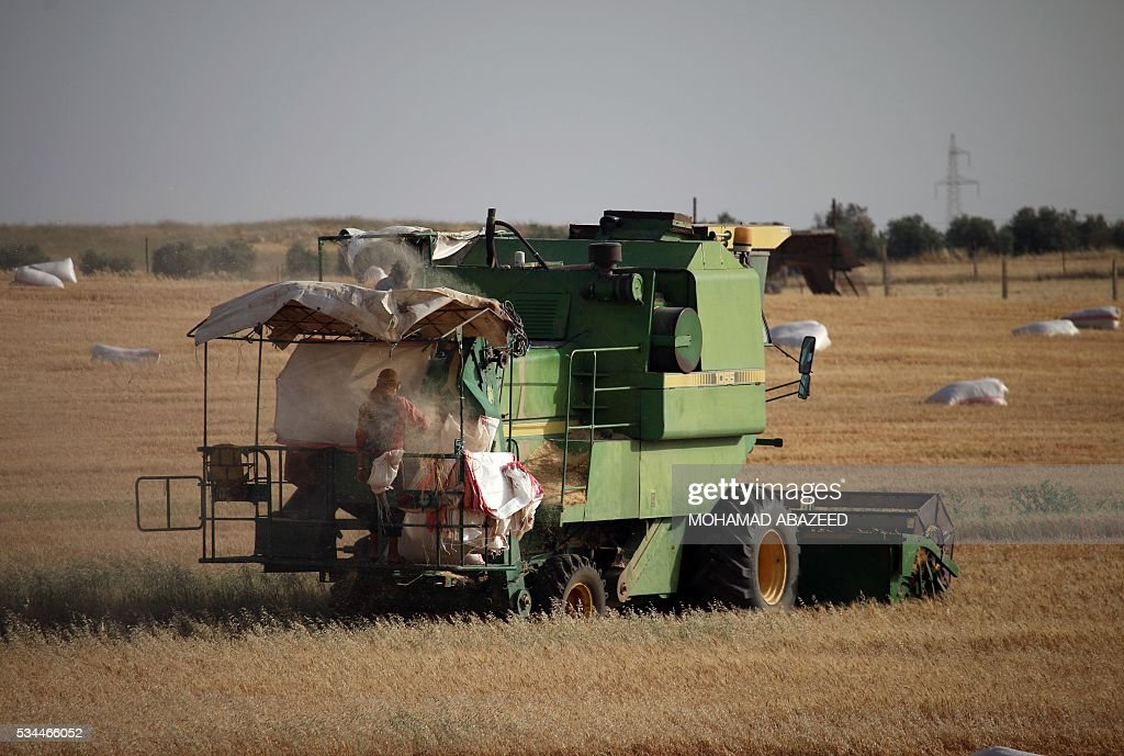 A Syrian man monitors a combine harvester as they harvest wheat in rebel-held area of Daraa, in southern Syria, on May 26, 2016. Most of Daraa province is controlled by opposition forces, though the government holds parts of the provincial capital and a few villages in the northwest. ABAZEED
