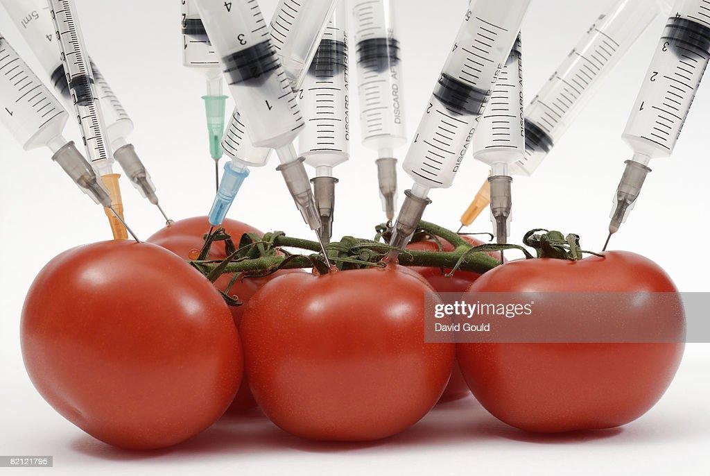Syringe needles pushed into tomatoes : Foto de stock