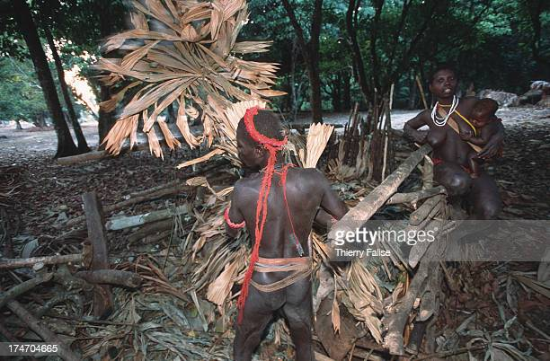 Ta'abat chief of the Jarawas community tastes the honey from a honey stock a collection of baskets buried under leaves and branches to deter bees and...