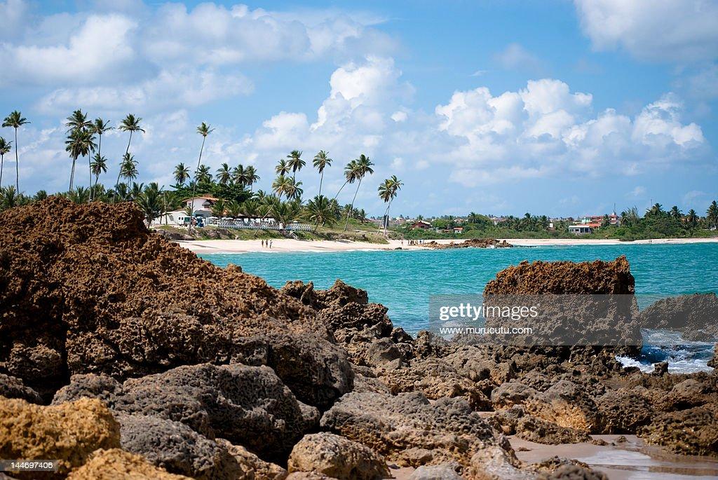 Tabatinga Beach : Stock Photo
