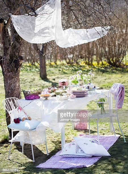 Table set in garden