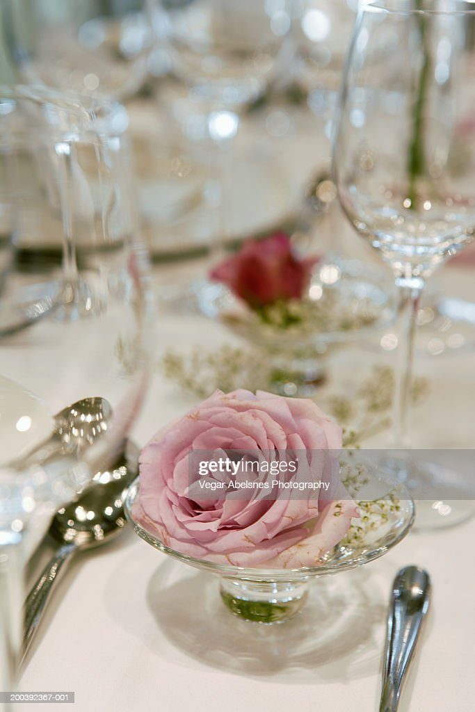 Table setting with rose : Stock Photo