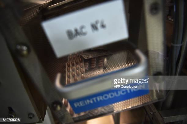 Tablets are pictured in the packaging chain in the premises of the French pharmaceutical company Servier in Gidy some 100 km south of Paris on...