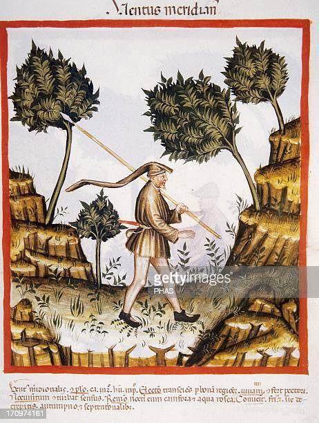 Tacuinum Sanitatis 14th century Medieval handbook of health A day of south wind Man with spear Miniature Fol 58r