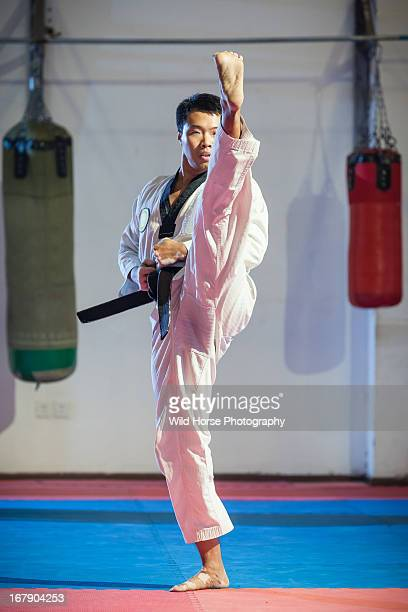 Taekwondo high kicking