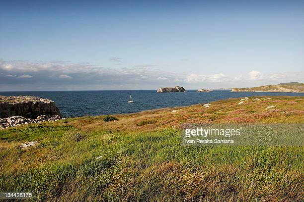 Tagle coast