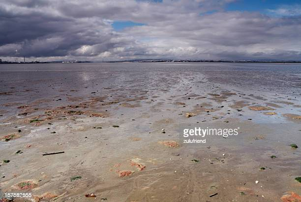 Tagus River at Low Tide