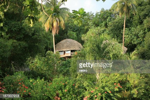 Tahitian jungle hut
