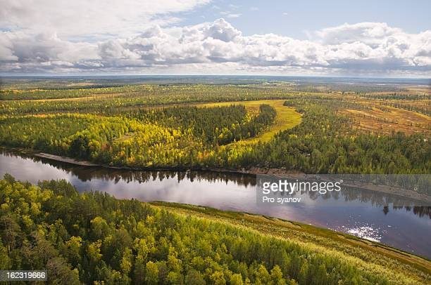 Taiga. Western Siberia.