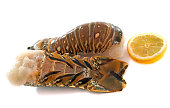 tails of spiny lobster in front of white background