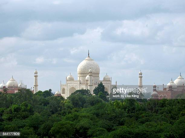 Taj Mahal and Mosque domes over tree tops