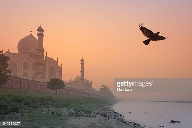 Taj Mahal and Yamuna river at sunset