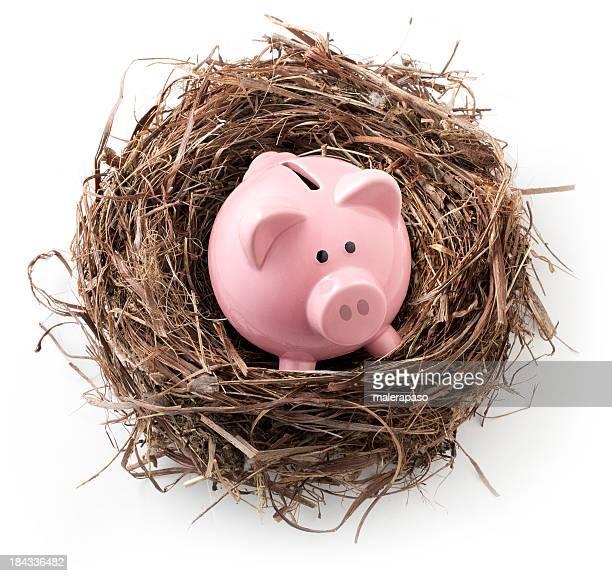 Prendre soin de leurs économies. Nid avec piggy bank.