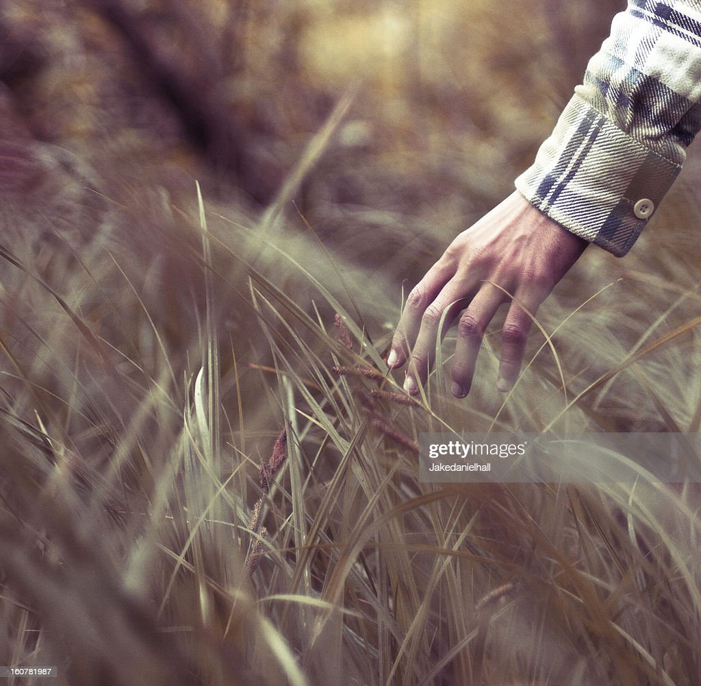 Take my hand now : Stock Photo