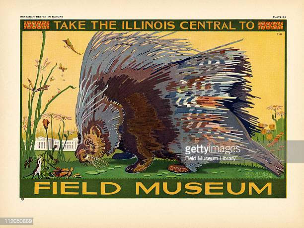 Take the Illinois Central to Field Museum color poster which includes a European Porcupine and the Field Museum building mid 1920s