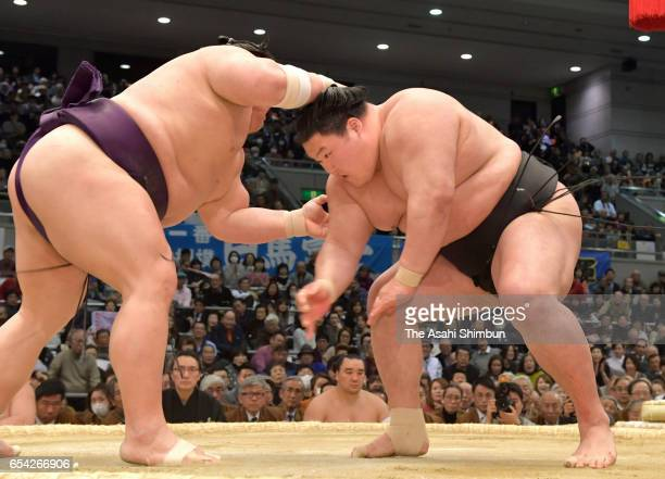 Takekaze and Ozeki Goeido compete during day five of the Grand Sumo Spring Tournament at Edion Arena Osaka on March 16 2017 in Osaka Japan