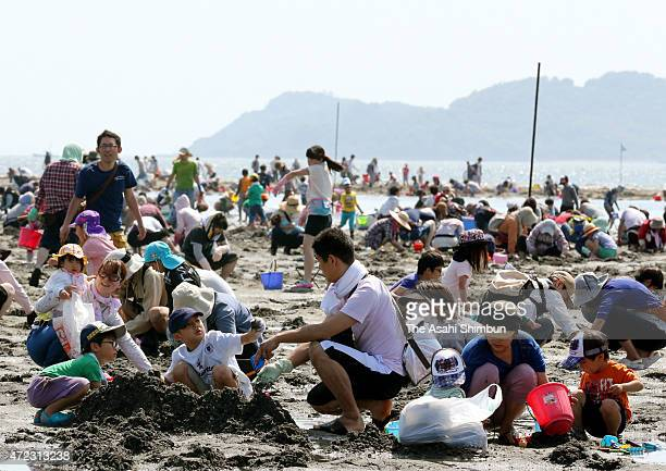 Takeshima beach is packed with people enjoying clam digging on May 5 2015 in Gamagori Aichi Japan Clam digging is one of the popular leisure...