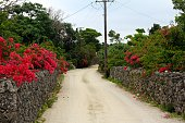 The house of taketomi island