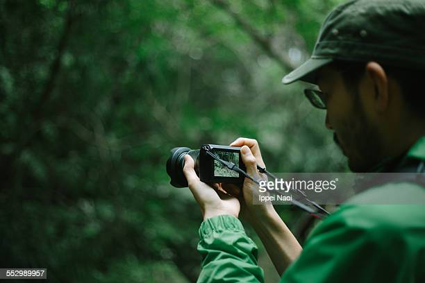 Taking a photo with mirrorless camera in forest