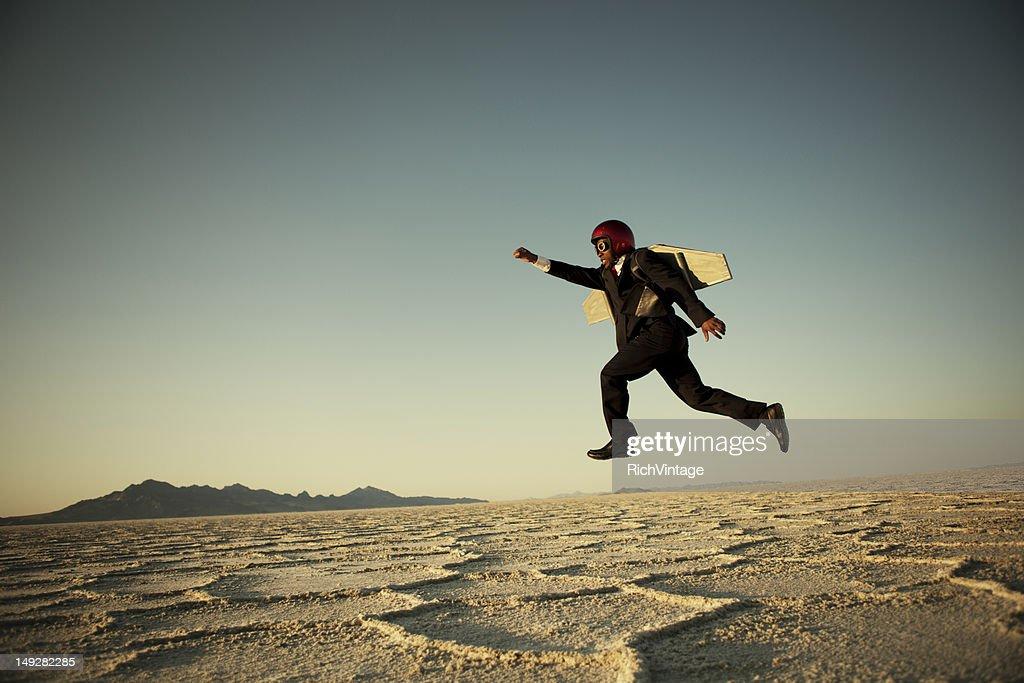 Taking Flight : Stock Photo
