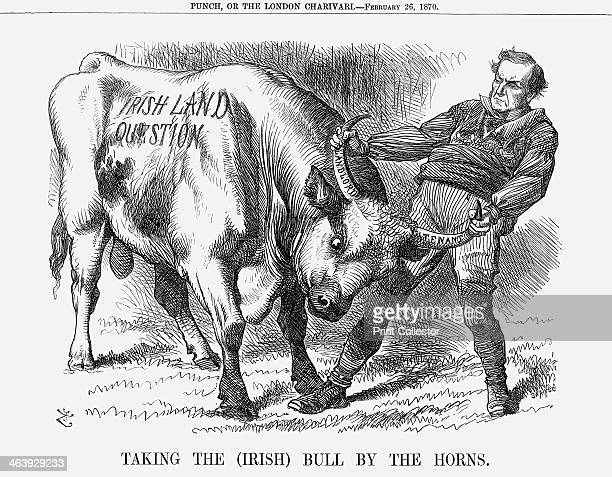 'Taking the Bull by the Horns' 1870 Mr Gladstone the Liberal Prime Minister takes the Irish bull by the horns The particular issue illustrated by...