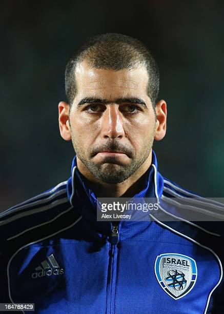 Tal Ben Haim of Israel looks on prior to the FIFA 2014 World Cup Group F Qualifier match between Northern Ireland and Israel at Windsor Park on March...