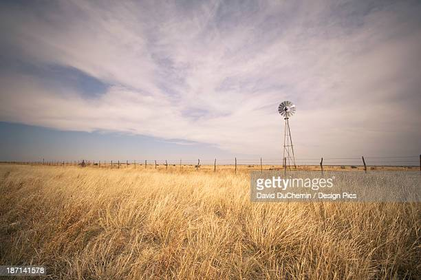 Tall Grass In A Field With A Wind Turbine Along The Fence
