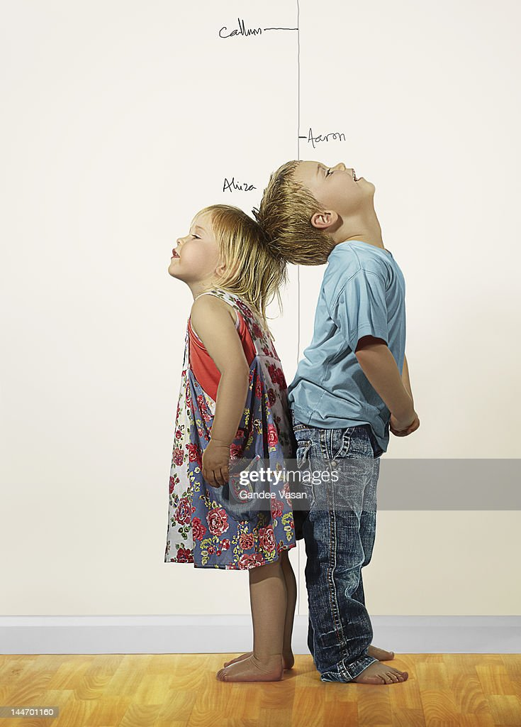 Taller : Stock Photo