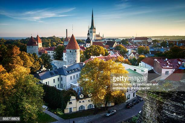 Tallinn in golden