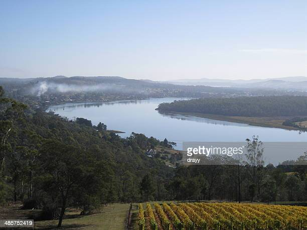 Tamar River and Vineyard