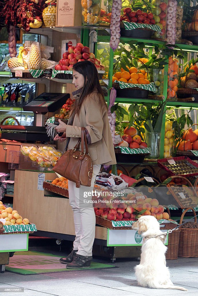 Tamara Falco is seen with her dog on April 22 2014 in Madrid Spain