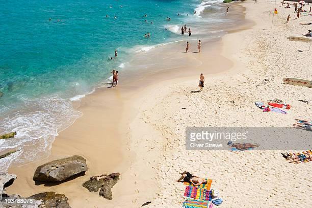 Tamarama Beach and beachgoers.