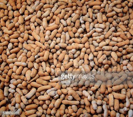 Tamarindo frutos fundo : Foto de stock