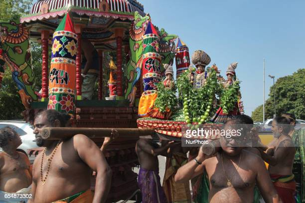 Tamil Hindu devotees carry the idols of Lord Murugan and his two wives Goddess Valli Ammai and Goddess Theivayaanai from their chariot back to the...