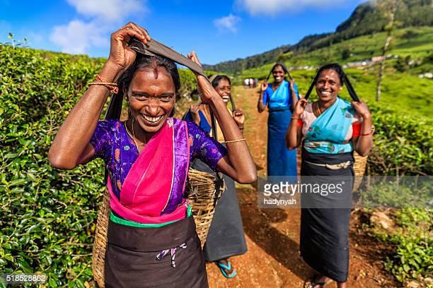 Tamil women working on plantation near Nuwara Eliya, Ceylon