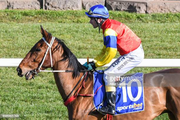 Taminga ridden by Adam Roustoby before the ECycle Solutions Maiden Hurdle at SportsbetBallarat Racecourse on June 15 2017 in Ballarat Australia