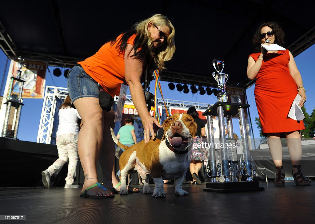 Tammie Barbee pets her dog Walle, a Beagle-Bassett, as judges announce that he has won this year's World's Ugliest Dog competition in Petaluma, California, on Friday, June 21, 2013. AFP Photo / Josh Edelson