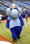Tampa Bay Rays mascot Raymond meets with fans before the start of a game against the Toronto Blue Jays on July 13 2014 at Tropicana Field in St...