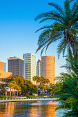 Tampa Florida, skyline, skyscrapers, cityscape, palm tree, copyspace, vertical cover