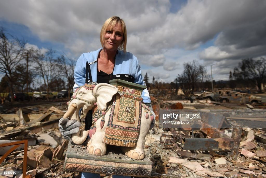 Tanya Williams recovers an elephant statue that was gifted to her husband at her burned home in the Coffey Park area of Santa Rosa, California, on October 20, 2017. Residents are being allowed to return to their burned homes on October 20 to grieve and search through remains. Around 5,700 homes and businesses have been destroyed by the fires, the deadliest in California's history. /