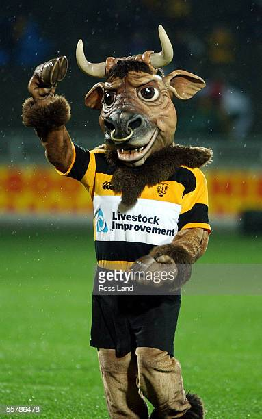 Taranaki rugby mascot Ferdinand The Bull during Taranaki's 3630 win over Otago in the Air New Zealand NPC first division rugby match at Yarrow...