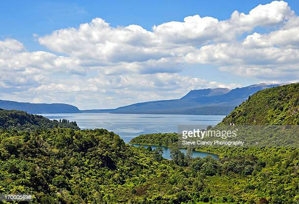 Tarawera Lake and Mountain